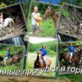Конные прогулки в Ольгинке