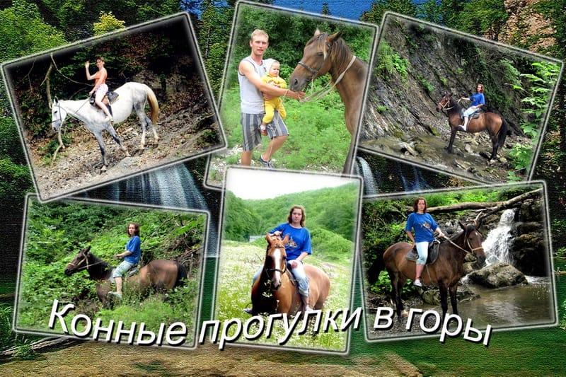 Прогулки на лошадях в Ольгинке