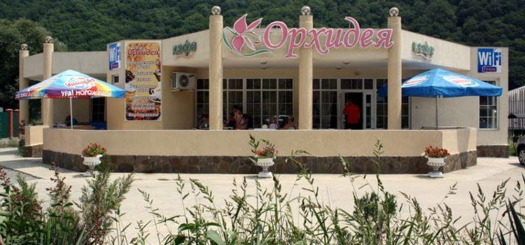 Кафе «Орхидея» в Ольгинке