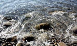 Дикий пляж в Ольгинке